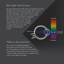 blue light and macular degeneration retinaguard anti blue light screen protectors about blue light