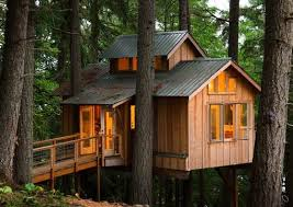 building your own tree house how to build a house adult tree house outdoor living room cape cod boston