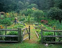 Fruit Garden Layout Vegetable Garden Makes Me Want A Fence Clattr