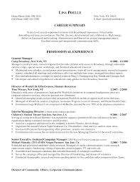 resume career summary cfo resume executive summary free resume example and writing sample resume for executive assistant to cfo