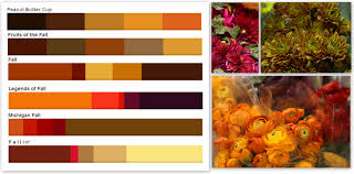 fall color pallette fall colors palettes pennock floral billion estates 56602