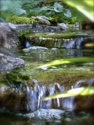 Aquascape Water Features Spring Summer Water Feature Maintenance Nh New London Sunapee
