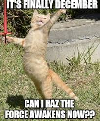 Star Wars Cat Meme - star wars cat is ready for episode 7 imgflip