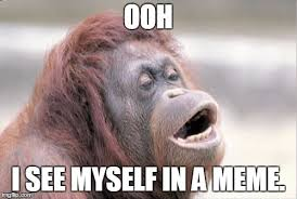 Ooh Meme - monkey ooh meme imgflip