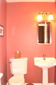 Colour Ideas For Bathrooms Download Bathroom Color Ideas For Painting Gen4congress Com 10