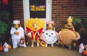 Mum U0027s Best Friend 10 Halloween Costume Ideas For Your Dog