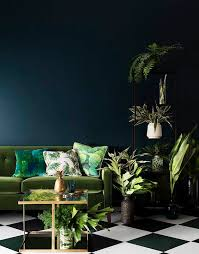 plants that grow in dark rooms not just for halloween deliciously dark interiors