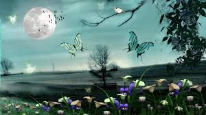 Flowers For Birds And Butterflies - sky trees butterfly flowers butterflies nights moon cattle