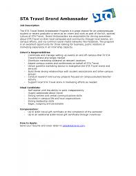 cover letter it job cover letter examples nonprofit ceo resume
