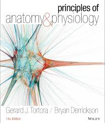 principles of anatomy and physiology 14th edition pdf free by tortora