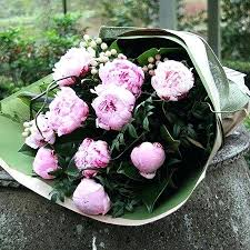 peony flower delivery peonies sydney delivery pink peony flowers for everyone peonies