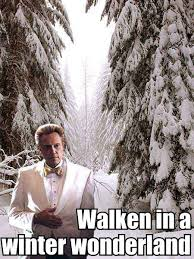 Christopher Walken Memes - walken in a winter wonderland weknowmemes