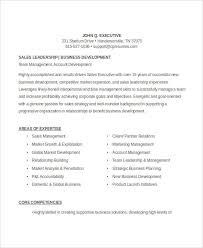 Sample Sales Executive Resume by 61 Executive Resume Templates Free U0026 Premium Templates