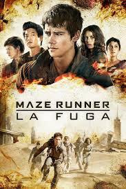 film fantasy streaming 2015 maze runner la fuga film e serie tv in streaming hd e download
