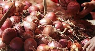 oignon chambre b 20 tonnes d oignons rouges exportées vers le koweit