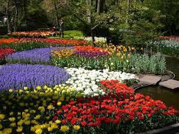 140 best jardin de keukenhof holanda images on pinterest gardens