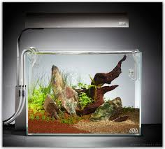 Aquascape Shop Individual Ada Manten Stone Pieces Online The Green Machine