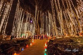 botanical garden christmas lights christmas lights decoration