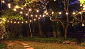 how to string lights on a tree patio string lights and bulbs