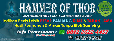 hammer of thor asli obat hammer of thor original