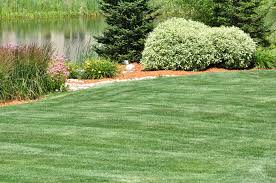 open and wild spaces tyler u0027s landscaping