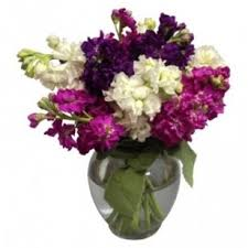 balloon delivery columbus ohio bloomtastic florist free delivery