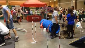 bureau expo st louis pet expo plots its but gets an f from better