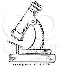 clipart of a black and white sketched microscope royalty free