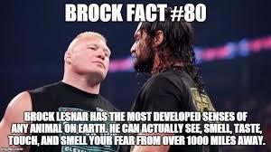Brock Lesnar Meme - this is true imgflip