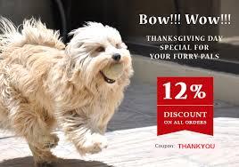 this thanksgiving day special for your pet bestvetcare