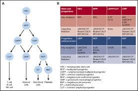 myeloproliferative neoplasm stem cells blood journal