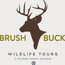 Arizona wildlife tours images Brushbuck wildlife tours national park wildlife tours from jpg