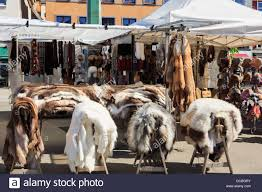 reindeer fur skins for sale as gifts for tourists on a stall in