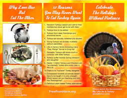 vegan stories thanksgiving activism and more animal voices