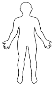 educations human body clipart cliparts and others art