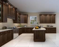 birch wood kitchen cabinets kitchen cabinets 10x10 portland chestnut