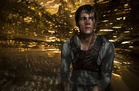 the maze runner film the maze runner movie review ny daily news