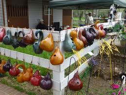 best 25 gourds birdhouse ideas on gourds painted