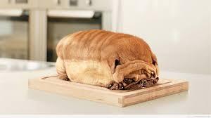 Loaf Meme - loaf of dog meme winner steemit