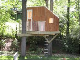 Backyard Fort Ideas Backyard Backyard Forts Staggering Ideas Backyard Fort Ideas