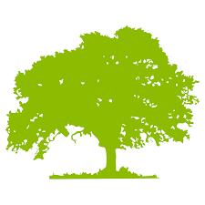 free oak tree silhouette clip art 45