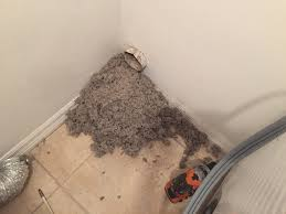 lint alert consumer alert dryer vent cleaning