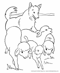 farm animal coloring pages flock sheep coloring kids