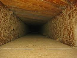 Crawl Space Cleaning San Francisco Best 25 Dryer Vent Cleaning Cost Ideas On Pinterest Dryer Duct