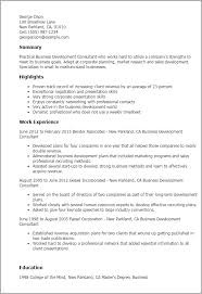 Consulting Resume Examples by Professional Business Development Consultant Templates To Showcase