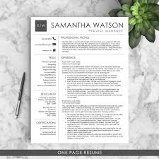 Word Professional Resume Template Best 25 Professional Resume Template Ideas On Pinterest