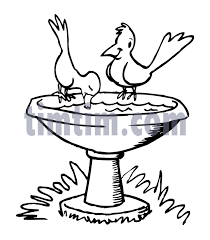 free drawing birdbath bw category birds u0026 insects