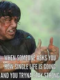 Single Man Meme - 222 best the single life images on pinterest being single real