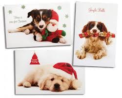 dog christmas cards dog christmas cards search doggie pics and doggie