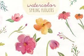 spring flower watercolor spring flowers illustrations creative market